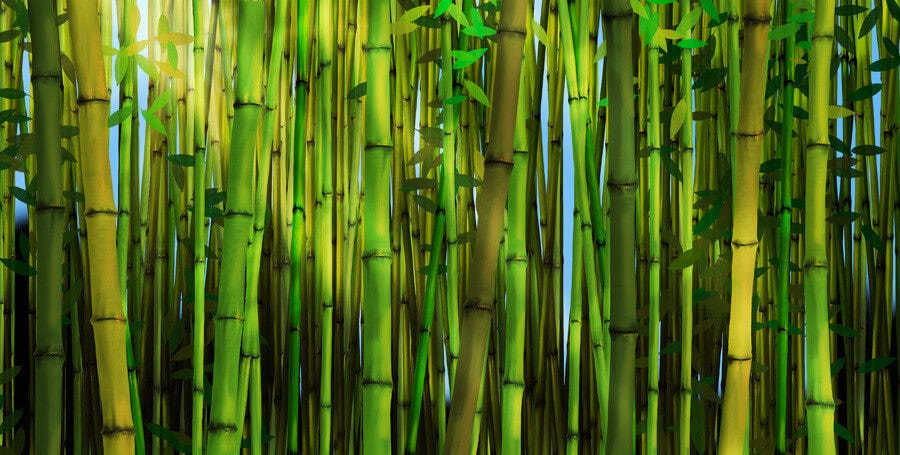 What is Bamboo Viscose and What Does It Do?